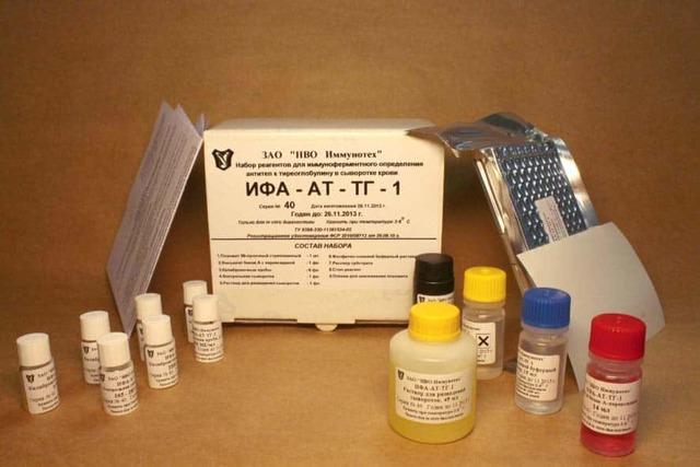 Антитела к тиреоглобулину (антиТГ): норма и причины повышения
