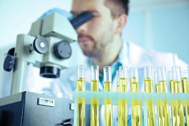 Бак посев мочи (бактериологический, бактериальный) - показания и сдача