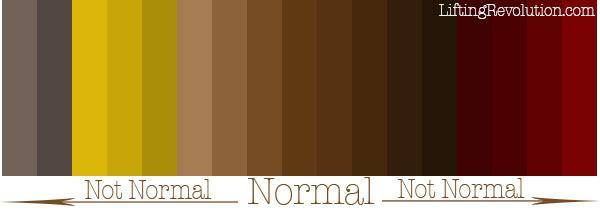 Светлый кал у взрослого: причины светло-коричневого цвета стула