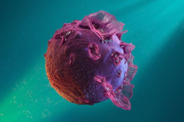Вирус Эпштейна-Барр у взрослых, симптомы и лечение у детей