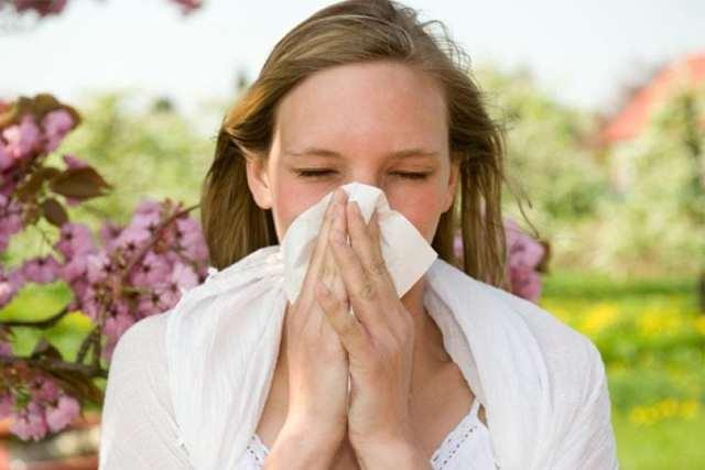 Сенная лихорадка (поллиноз): симптомы и лечение