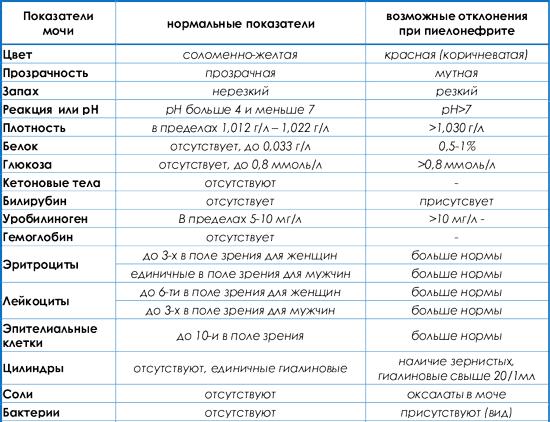 Анализ мочи при пиелонефрите: диагностика, биохимические маркеры