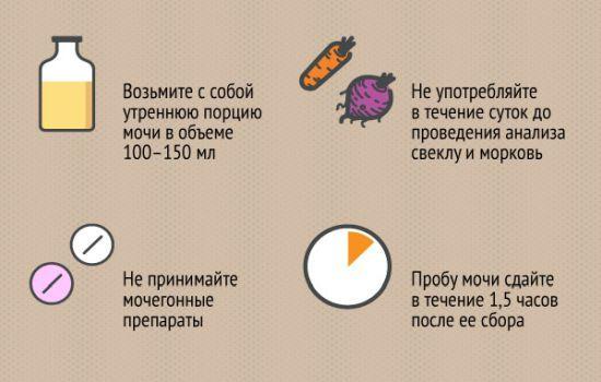 Хороший анализ мочи: правильная подготовка, цвет, плотность, клетки