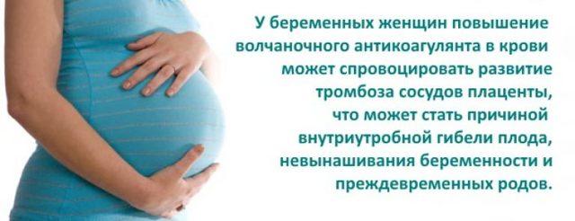 Что такое волчаночный антикоагулянт: норма анализа при планировании беременности