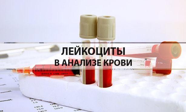 Норма лейкоцитов в крови (таблица): пониженный или повышенный уровень в анализе