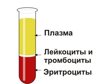 Тромбокрит в анализе крови: норма и причины отклонений