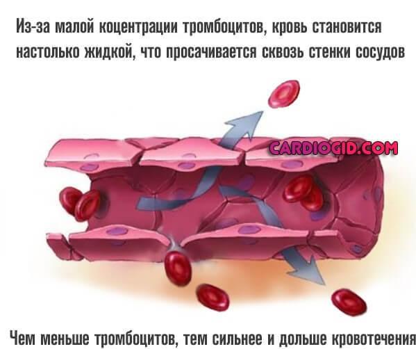 Антикоагулянты прямого и непрямого действия: список препаратов
