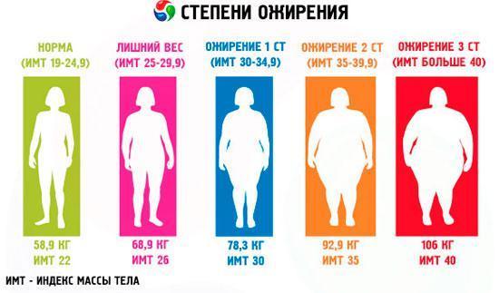 Фруто Слим для похудения: цена, отзывы, где купить, инструкция