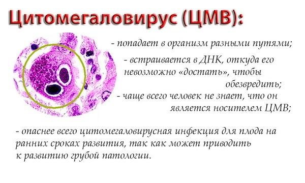 Цитомегаловирус у детей: симптомы и лечение, последствия ЦМВ